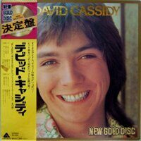 David Cassidy ‎– New Gold Disc