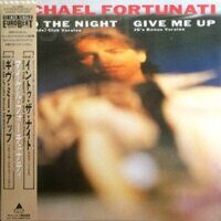 "Michael Fortunati ‎– Into The Night / Give Me Up, Vinyl, 12"", 45 RPM"