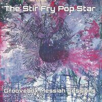 The Stir Fry Pop Star - Groovebox Messiah Sessions
