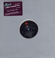 "Poison  ‎– I Won't Forget You,Vinyl, 12"", Promo"